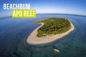 apo reef island of apo reef natural park