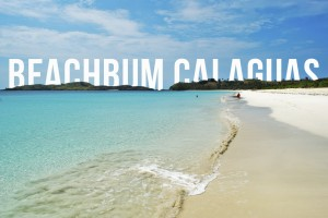 Beachbum Calaguas