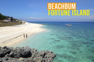Beachbum Fortune Island