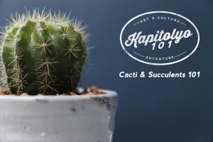 Cacti & Succulents 101
