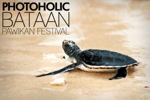 PHOTOHOLIC Bataan Pawikan Festival